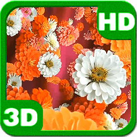 Bloom Zinnias Flowers Drift Android Personalization 3D Live Wallpaper download from piedlove.com