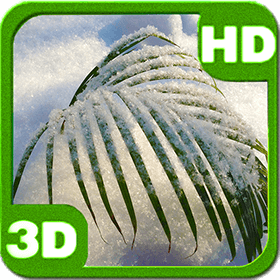 snowy-tender-palm-branch