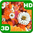 Bloom Zinnias Flowers Drift Deluxe HD Edition 3D Live Wallpaper
