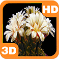 Blooming Flower Cactus Bud Deluxe HD Edition 3D Live Wallpaper for Android