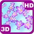 Crocus Bloom Colorful Drifting Android Personalization 3D Live Wallpaper download from piedlove.com
