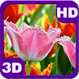 Fascinating Flowering Tulips Deluxe HD Edition 3D Live Wallpaper