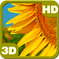 Galaxy S6 Flowering Sunflower Deluxe HD Edition 3D Live Wallpaper