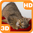 Little Kitten Cute Playing Android Personalization 3D Live Wallpaper download from piedlove.com