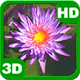 The Lost Purple Waterlily Pond Deluxe HD Edition 3D Live Wallpaper