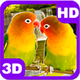 Lovebirds Kissing Parrots Pair Deluxe HD Edition 3D Live Wallpaper