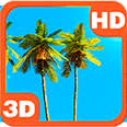 Magnificent Palm Sky Scenery Deluxe HD Edition 3D Live Wallpaper for Android