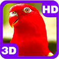 Wonderful Red Parrots Chatter Deluxe HD Edition 3D Live Wallpaper