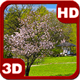 Wonderful Sakura Zen Scenery Android Personalization 3D Live Wallpaper download from piedlove.com
